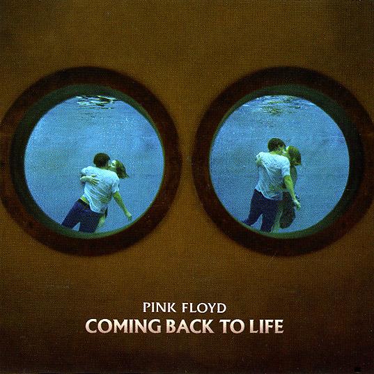 an introduction to the life of kyle floyd Traduction en français de la chanson coming back to life du groupe pink floyd 8ème piste de l'album the division bell sorti en 1994 property of the ban.
